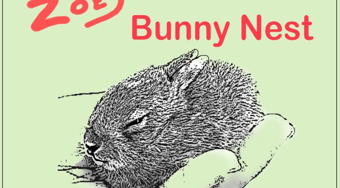 Zoey Finds a Bunny Nest – Red Creek's Newest Book